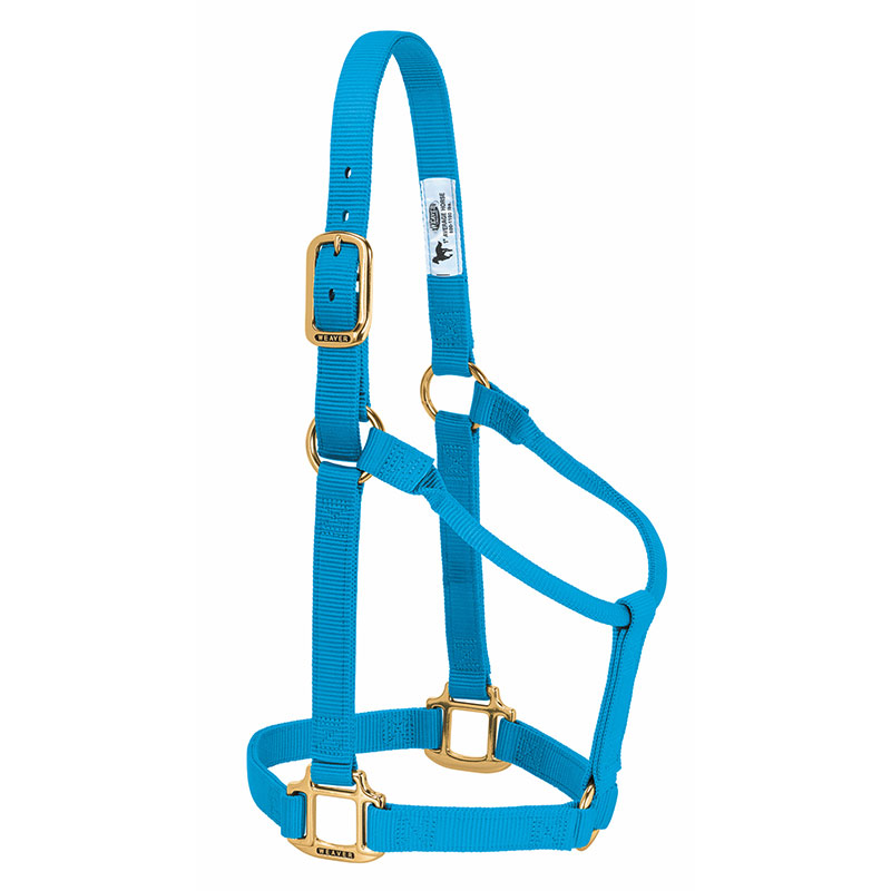 Weaver Leather Original Non-Adjustable Nylon Horse Halter (Small Horse) - Hurricane Blue - Gebo's