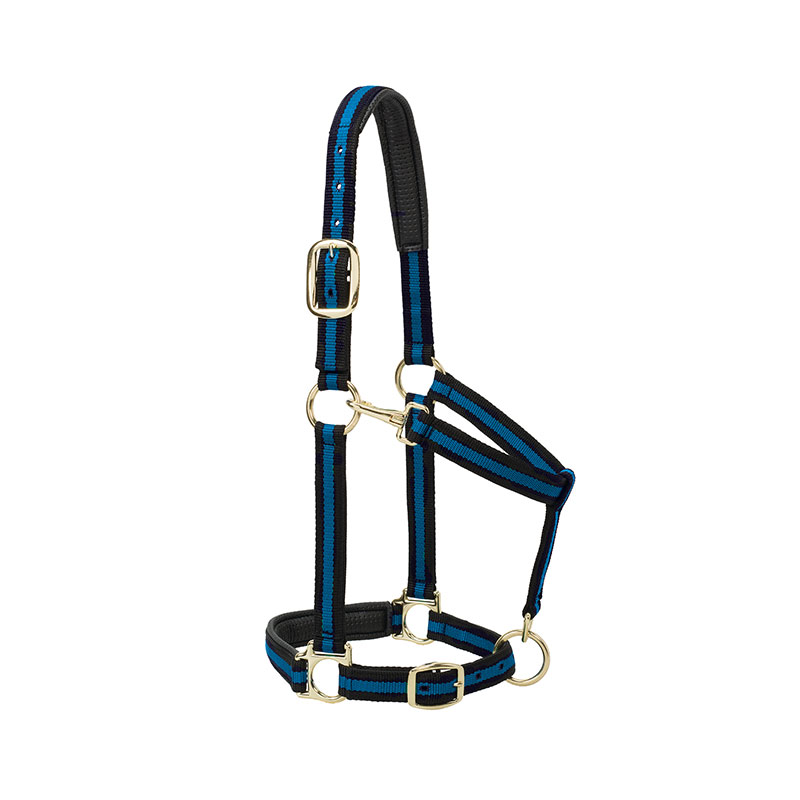 "1"" Weaver Leather Padded Adjustable Chin & Throat Snap Halter (Average Horse or Yearling Draft) - Black/Blue - Gebo's"