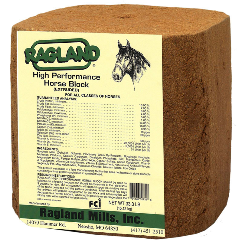 33.3 Lb. Ragland High Performance Horse Block - Gebo's